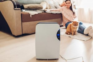 Air Purifier in Residential Home